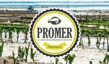 logo salon promer